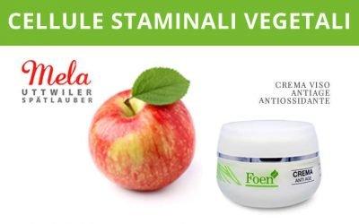 L'utilizzo in cosmetica delle cellule staminali vegetali
